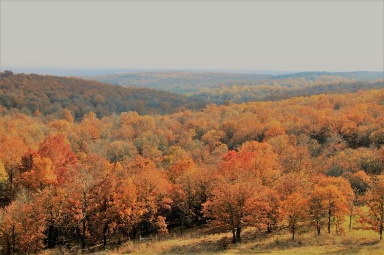 autumnintheosage-2